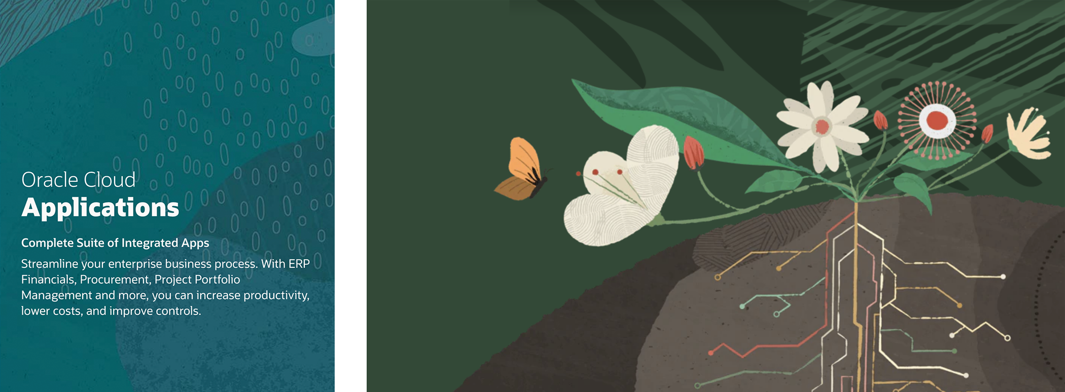 Illustrations of nature patterns and flowers