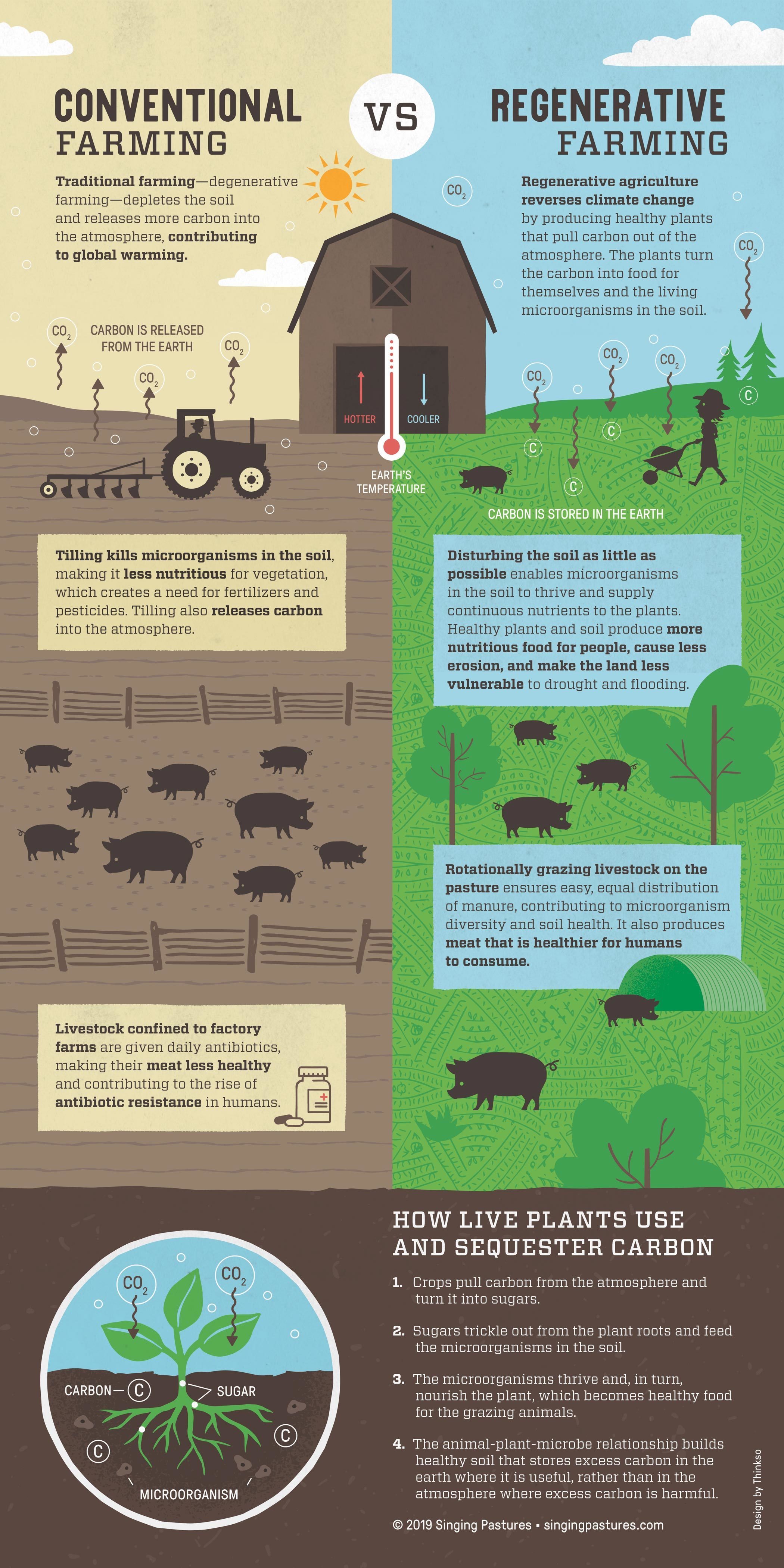 An illustrated infographic comparing of Singing Pastures regenerative farming methods  to traditional farming methods.