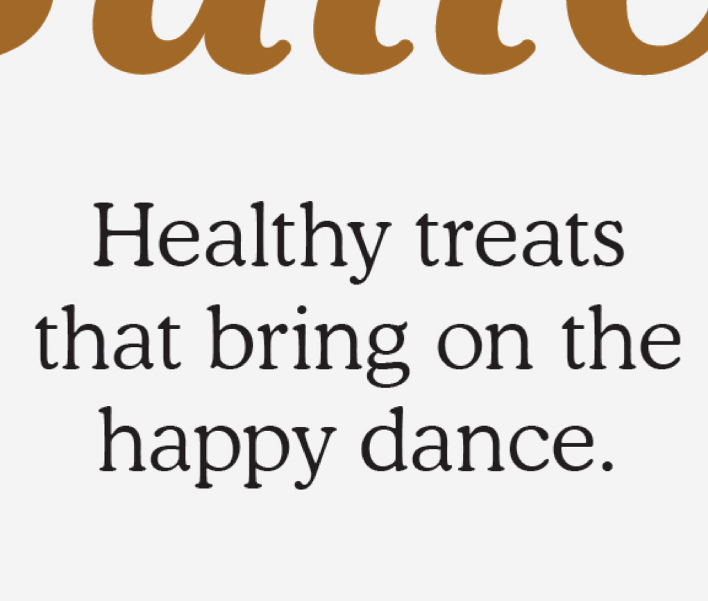 "Close up of Dogs Love Us treat package with the phrase ""Healthy treats that bring on the happy dance."""